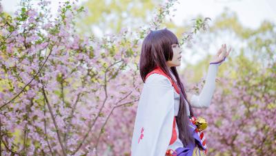 ◆嘟嘟◇雪女.Ver◆——◇桃源恋歌◇