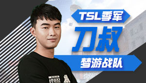 【TSL中国区季军】梦游刀叔 娱乐至上各种浪