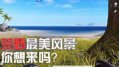 【狗头侠暴力实况第十二期】荒野里最美的风景!#荒野行动